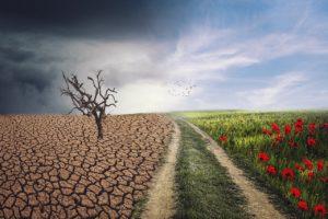 Klima und Geld