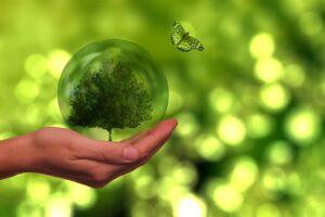 ESG, SDG, Impact – das kleine Einmaleins der nachhaltigen Kapitalanlage